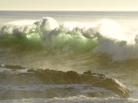 Green Wave in seascape photo gallery