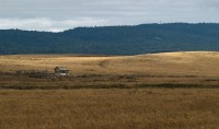 Little Shack on the Palouse in manmade objects photo gallery
