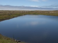 Pond in the Dunes in Southern Mendocino Coast photo gallery