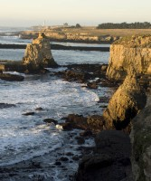 Towers in Southern Mendocino Coast photo gallery