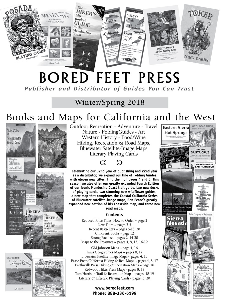 Bored Feet Press Catalog Cover in Print Design photo gallery