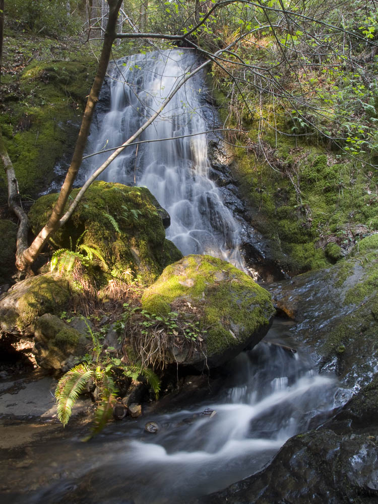 Upper Chamberlain Creek Falls in JDSF/Mendo Woodlands photo gallery