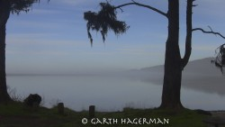 Big Lagoon in fog photo gallery