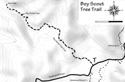 Boy Scout Tree Trail Map in graphic design photo gallery
