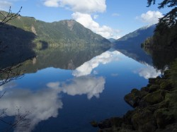 Lake Crescent Reflections in reflections photo gallery