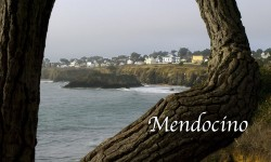 Mendocino Fridge Magnet in Print Design photo gallery