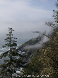North to Crescent City in fog photo gallery