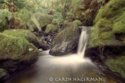 Ossagon Creek in creeks and rivers photo gallery