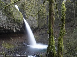 Upper Horsetail Falls in waterfall photo gallery