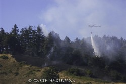 Wildfire in Lost Coast photo gallery