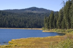 Willow Lake in lakes and ponds photo gallery