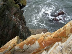 Yin Yang Wave in Southern Mendocino Coast photo gallery
