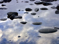 Floating Rocks in Southern Mendocino Coast photo gallery