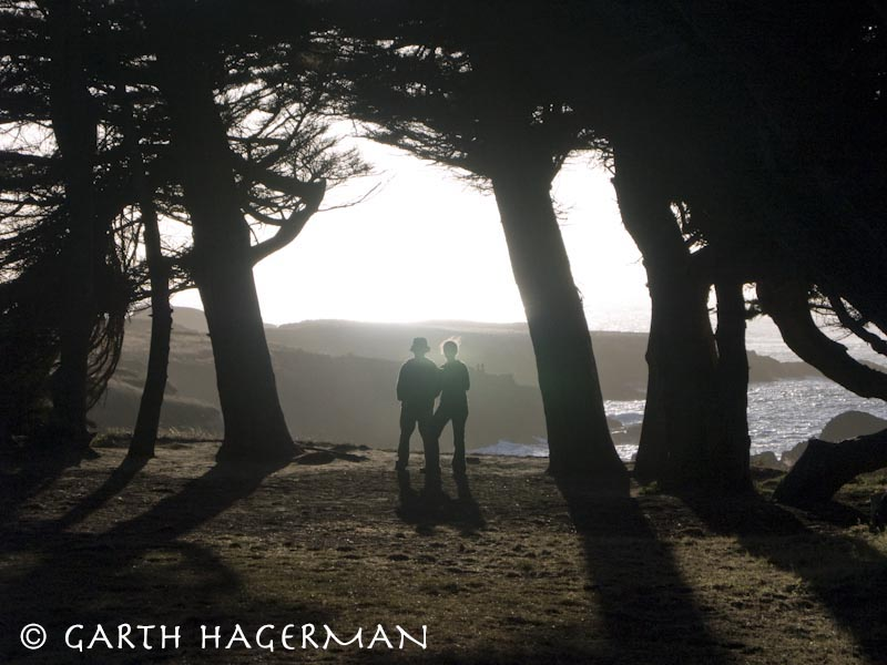 Cypress Couple on Garth Hagerman Photo/Graphics