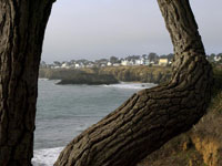 Mendocino Framed in Mendocino photo gallery